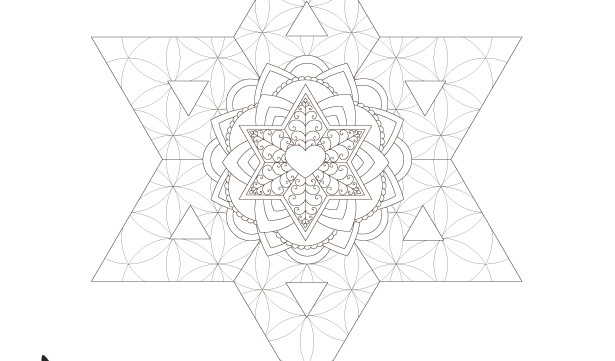 Star of David Flower of Life Pattern-Sacred Geometry Strength